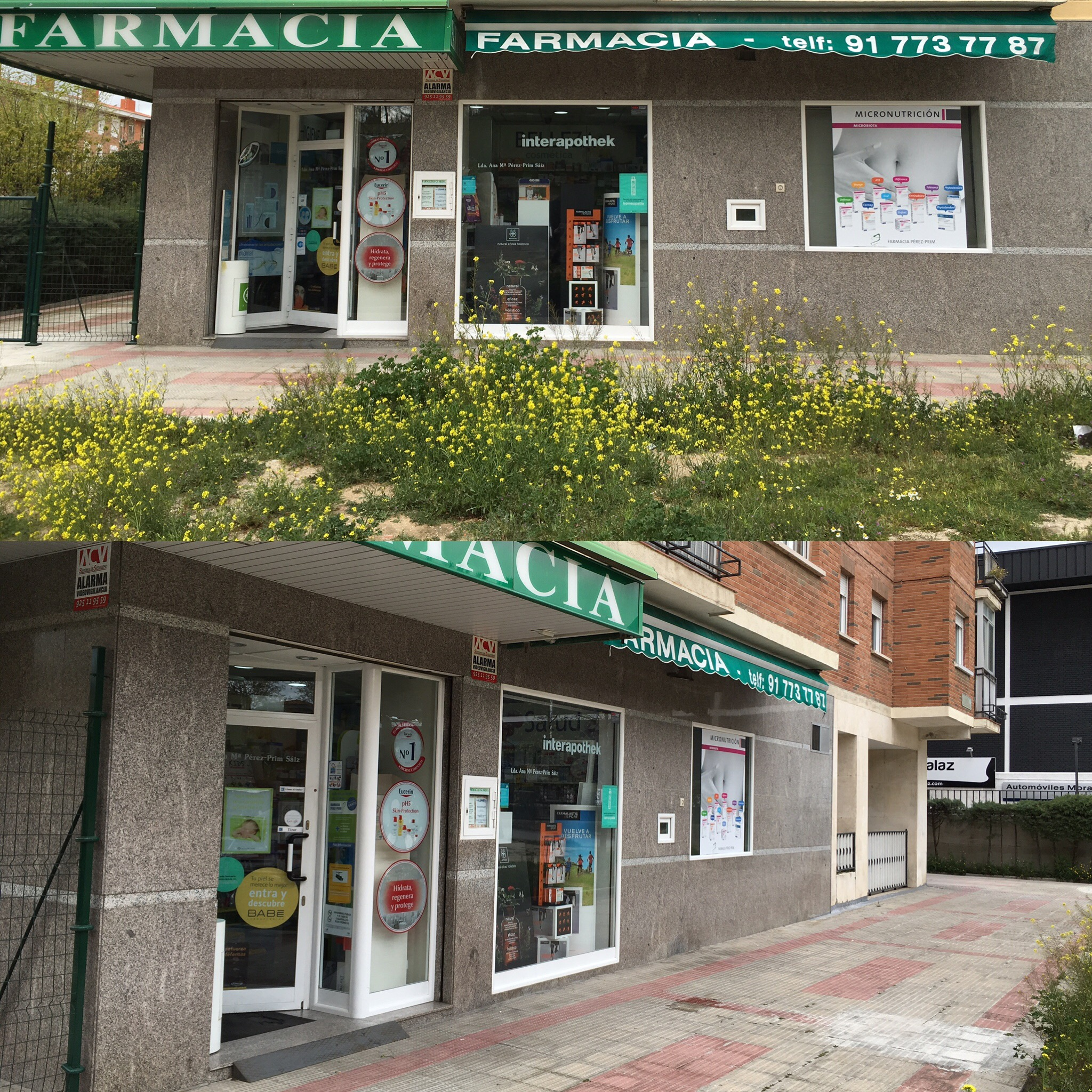 Farmacia Perez Prim
